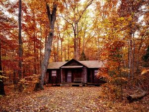 Buy a house in Pennsylvania - autumn, cabin in the woods.