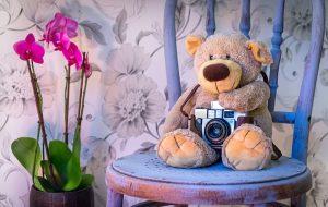 A teddy bear with a camera on a chair.