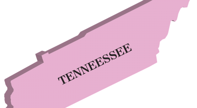 Tennessee flag - pick one of best places to invest in real estate inside Tennessee.