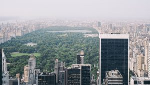 A view of the Central Park.