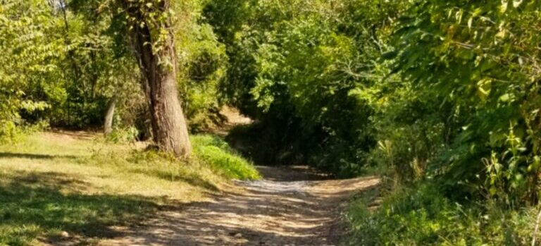 Mildland park and trail.