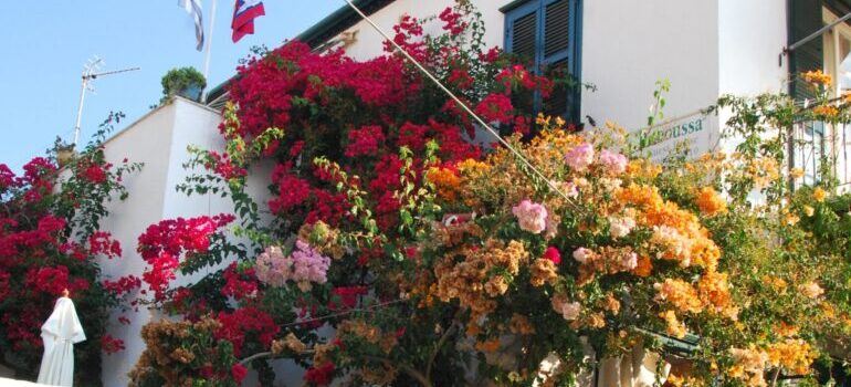 Flowers on the balcony is among good tips for decorating your balcony